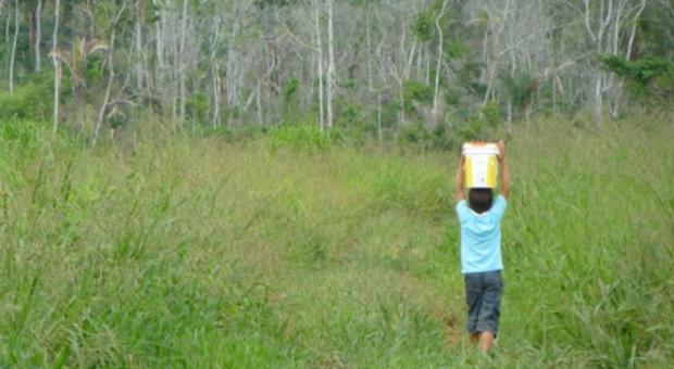 Saneamento Rural