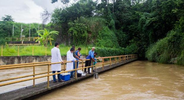 No Rio Guandú há muito mais que algas
