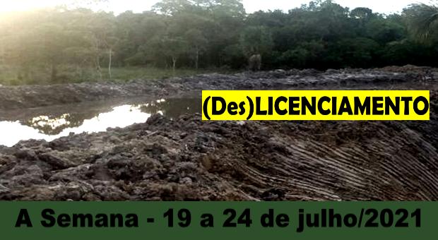 Licenciamento ambiental em tramitação no Senado desrespeita princípios constitucionais